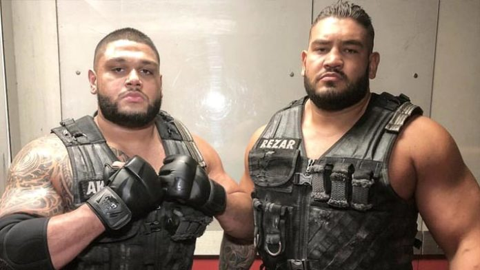 Where Will Authors Of Pain Write Their Next Chapter?