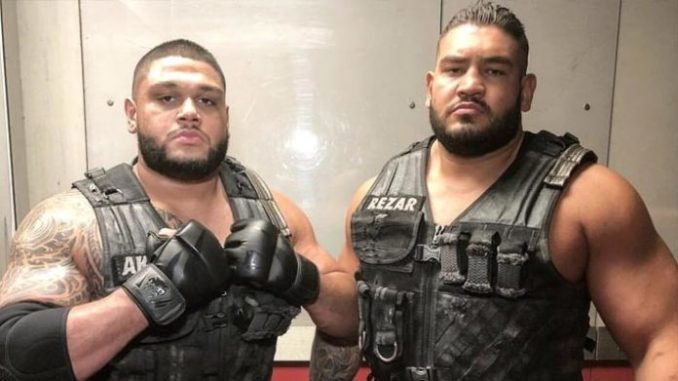 Authors Of Pain Retired From Professional Wrestling